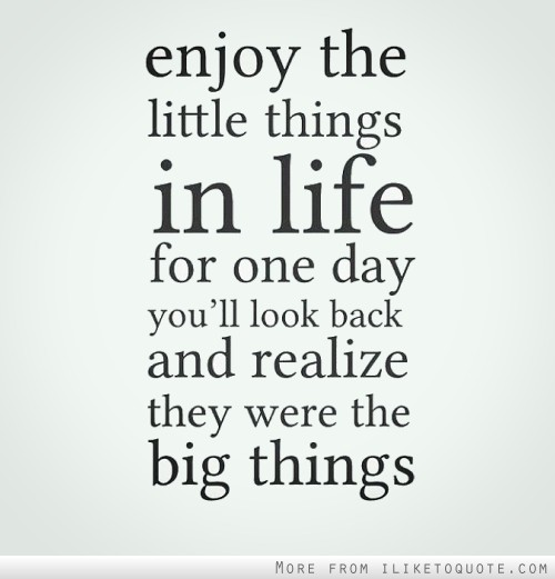 Enjoy the little things in life, for one day you'll look back and realize they were big things.