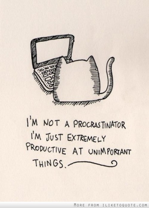 I'm not a procastinator. I'm just extremely productive at unimportant things.