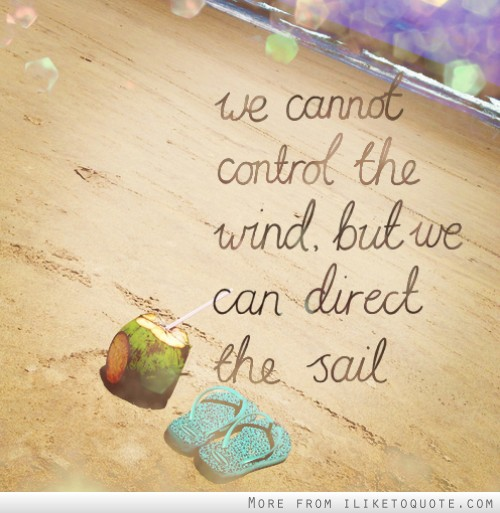 We cannot control the wind but we can direct the sail.
