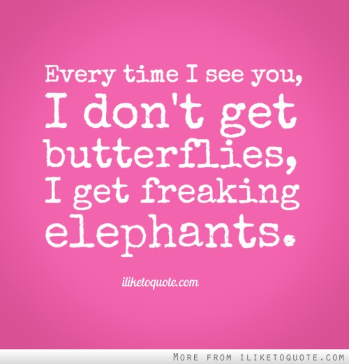 Every time I see you, I don't get butterflies, I get freaking elephants.