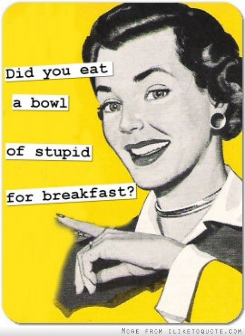 Did you eat a bowl of stupid for breakfast?