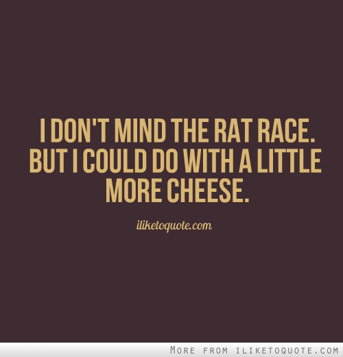 I don't mind the rat race. But I could do with a little more cheese.