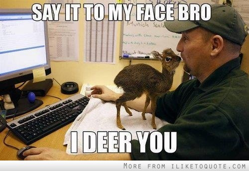 Say it to my face bro, I deer you!