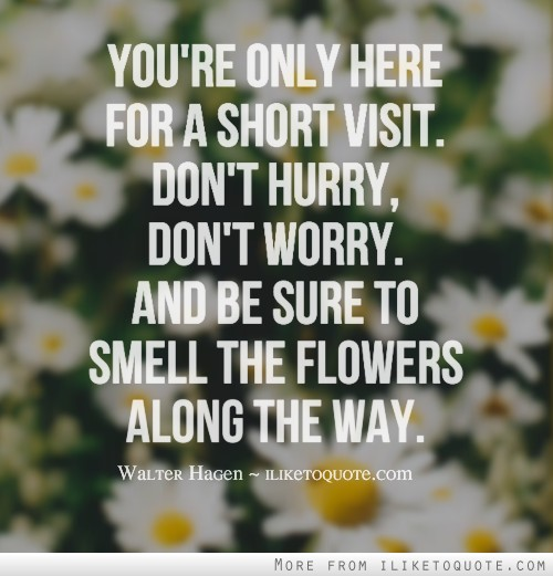 You're only here for a short visit. Don't hurry, don't worry. And be sure to smell the flowers along the way.
