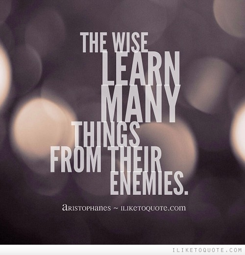 The wise learn many things from their enemies.