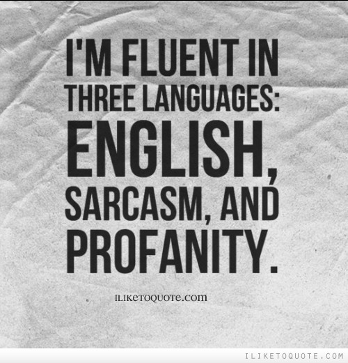 i u0026 39 m fluent in three languages  english  sarcasm  and profanity