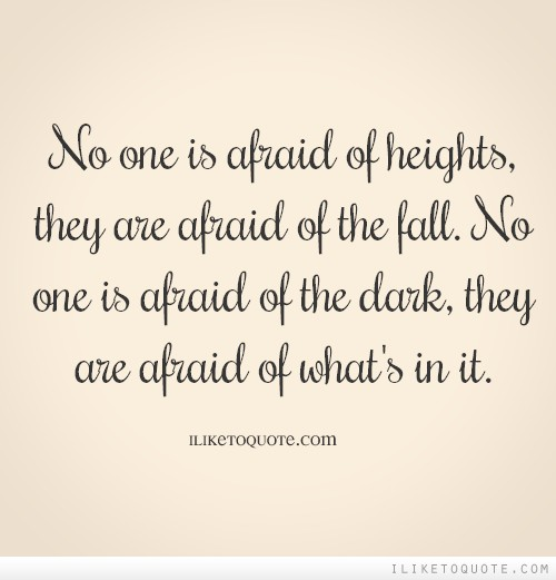 No one is afraid of heights, they are afraid of the fall. No one is afraid of the dark, they are afraid of what's in it.