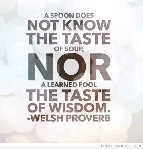 A spoon does not know the taste of soup, nor a learned fool the taste of wisdom