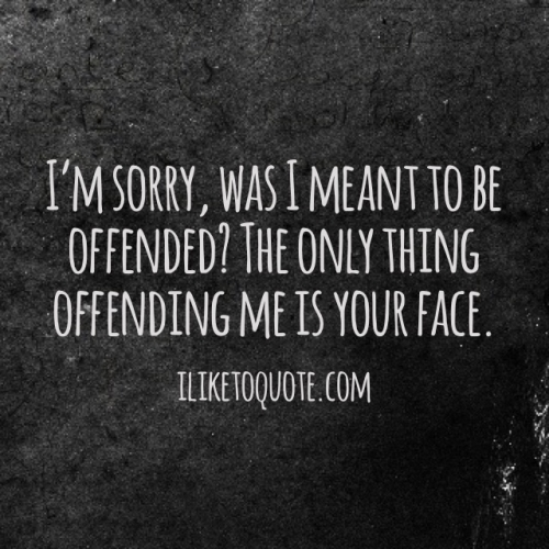 I'm sorry, was I meant to be offended? The only thing offending me is your face.