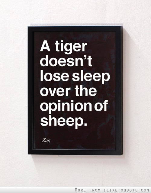 A tiger doesn't lose sleep over the opinion of sheep.