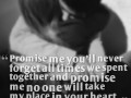 Promise me you'll never forget all times we spent together and promise me no one will take my place in your heart.