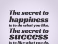 The secret to happiness is to do what you like. The secret to success is to like what you do.