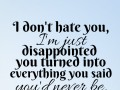 I don't hate you, I'm just disappointed you turned into everything you said you'd never be.