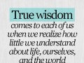 True wisdom comes to each of us when we realize how little we understand about life, ourselves, and the world around us.
