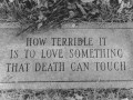 How terrible it is to love something that death can touch.