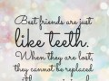 Best friends are just like teeth. When they are lost, they cannot be replaced with an original.
