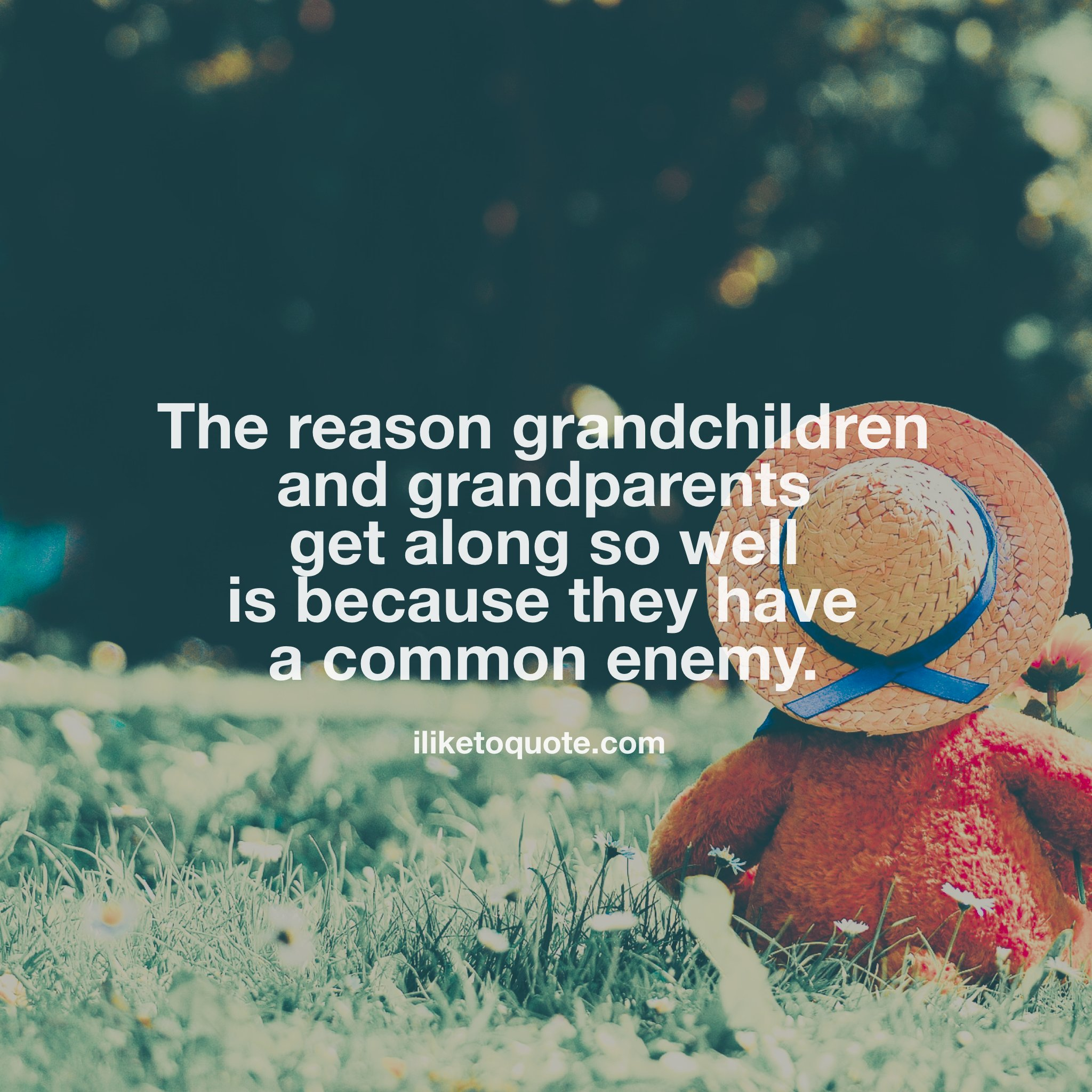 The reason grandchildren and grandparents get along so well is because they have a common enemy.