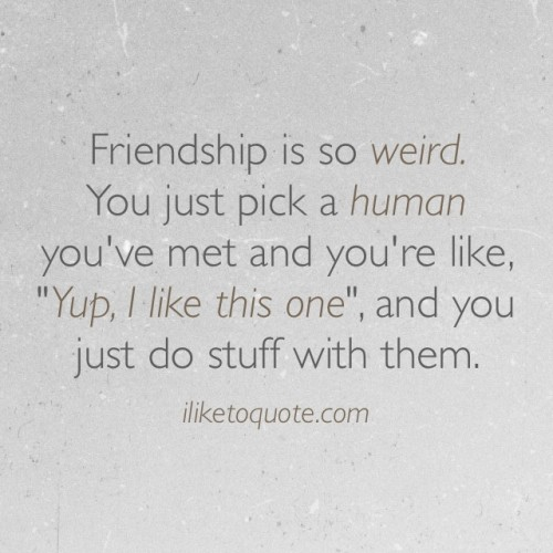 "Friendship is so weird. You just pick a human you've met and you're like, ""Yup, I like this one"", and you just do stuff with them."